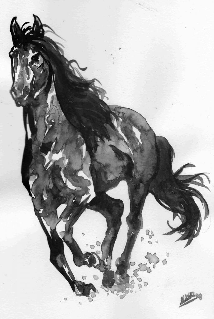 Cheval noir de Saint-Augustin de Desmaures